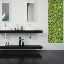 Mur vegetal - Salle de bain